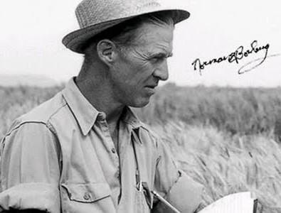 Nho Norman Borlaug